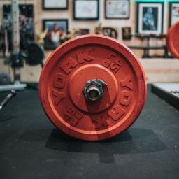 6 mejores ejercicios con gomas elásticas para entrenar todo tu cuerpo