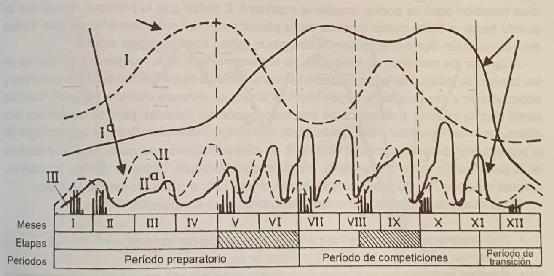 Historia de la programacion del entrenamiento